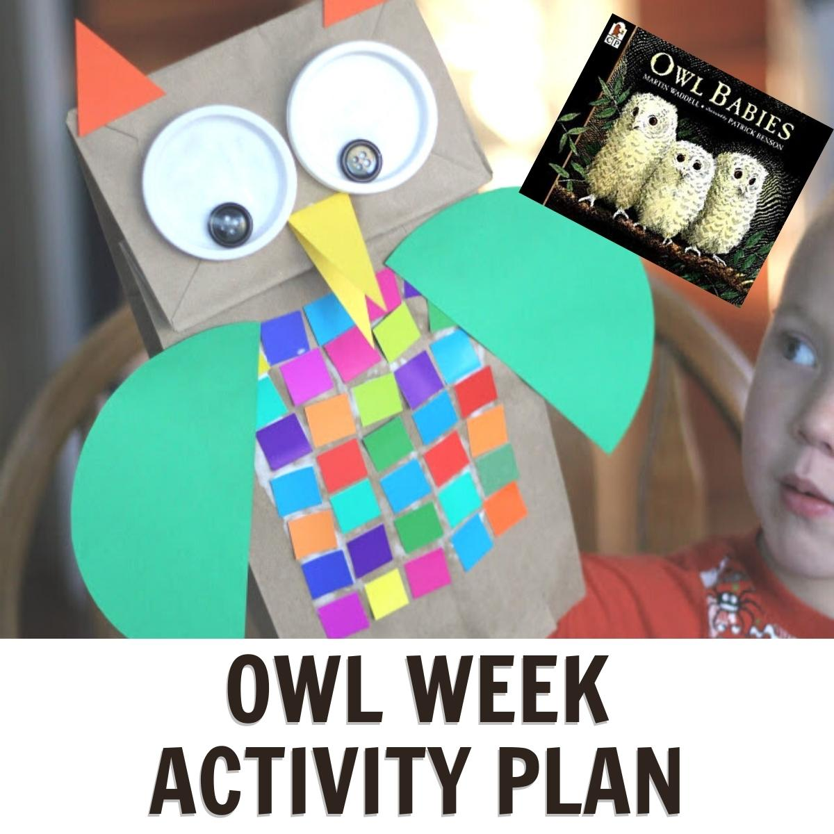 paper bag owl a fun week of planned activities all about owls for preschoolers
