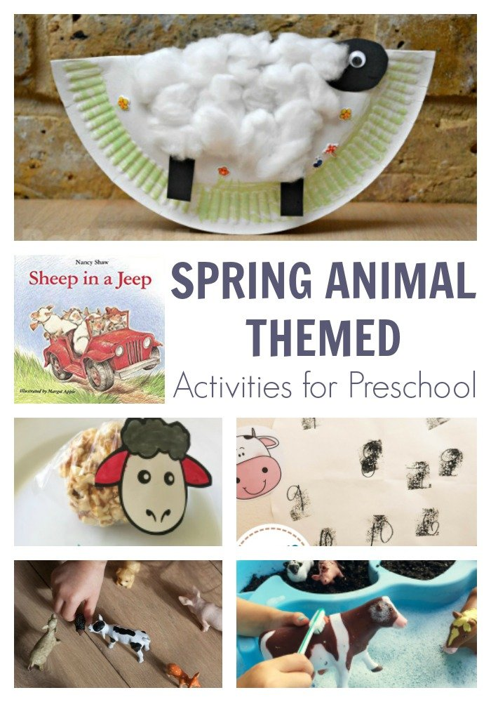 Spring Animal Week for Preschoolers Featuring Sheep in a Jeep