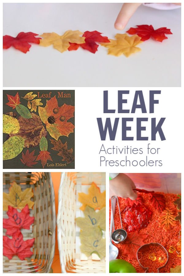 leaf week activities for preschoolers featuring the book leaf man by lois elhert