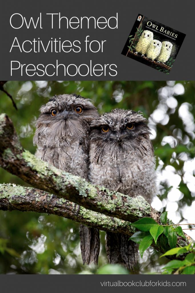 owl themed activities for preschoolers
