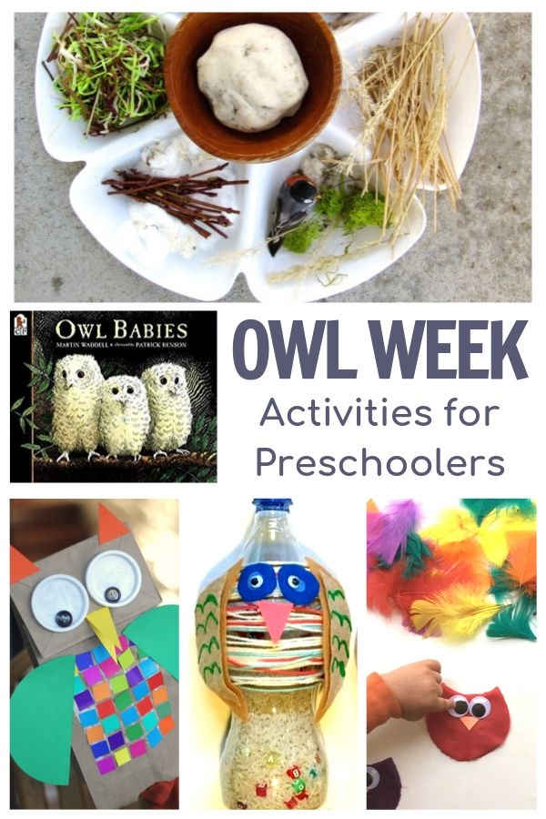 Owl Week for Preschoolers Featuring Owl Babies