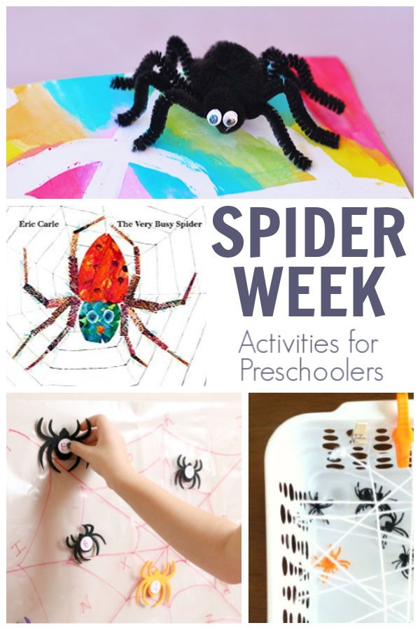 spider themed activities for preschoolers and featured book The Very Busy Spider by Eric Carle