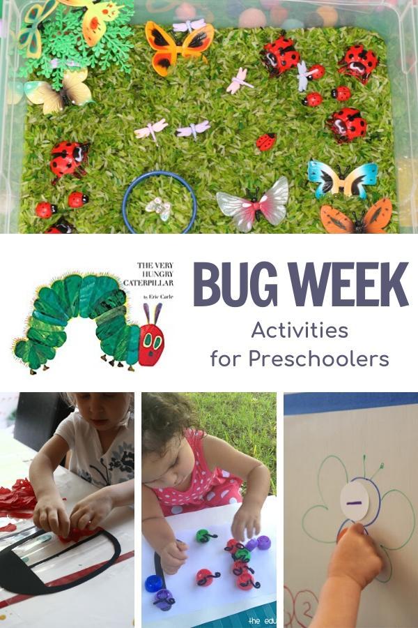 bug week activity plan for preschoolers showing activities