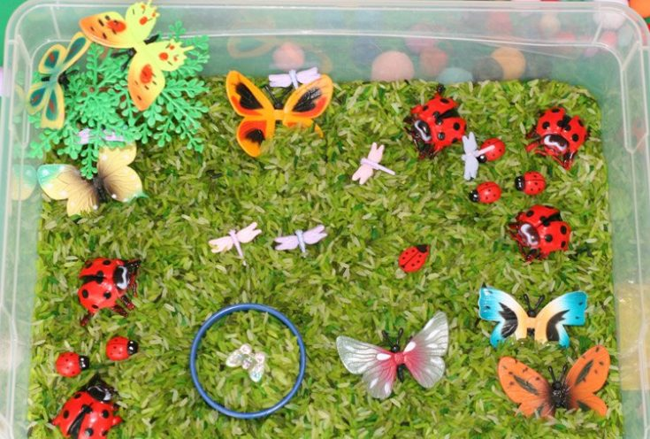 Bugs and Spring Themed Activity