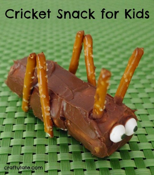Cricket Snack for Kids