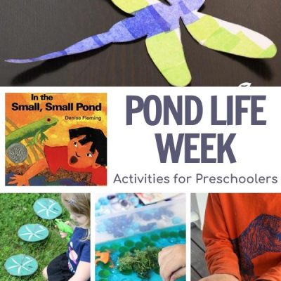 Pond Week for Preschoolers Featuring In a Small, Small Pond