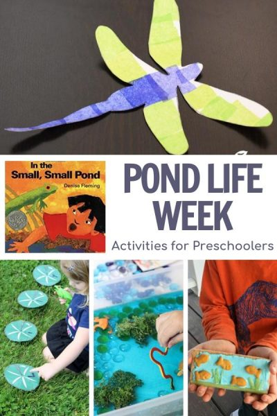 In a small small pond week of planned activities for preschoolers