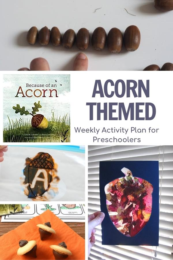 collage of acorn activities for preschoolers and the cover of Because of an acorn book