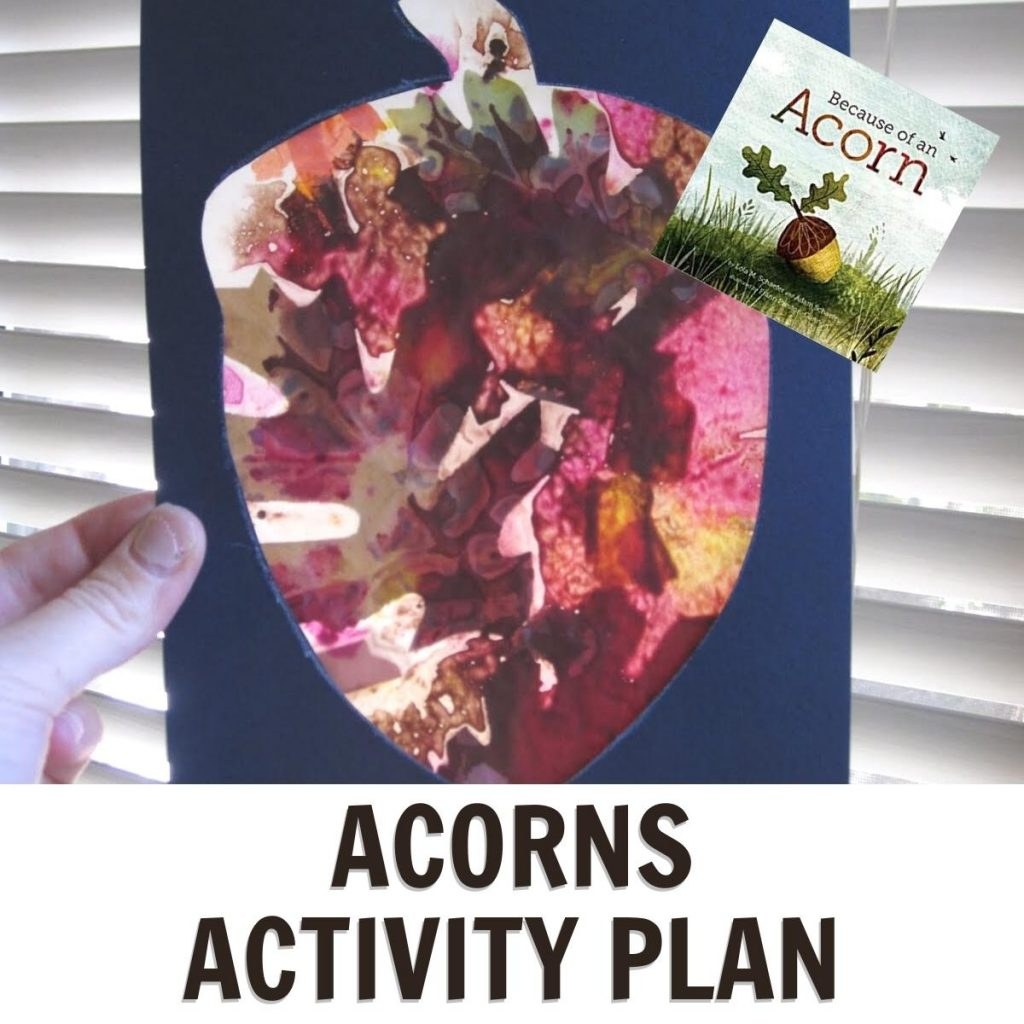 acorn sun catcher for a fun week of activities inspired by the book Because of An Acorn