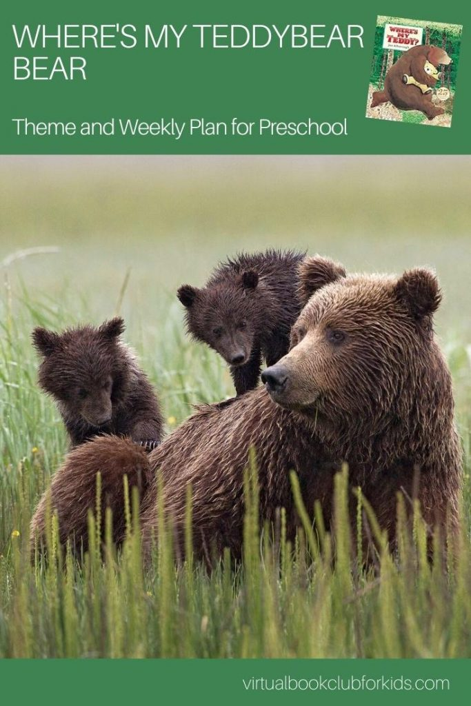 where's my bear pinterest image for the activity plan for preschoolers
